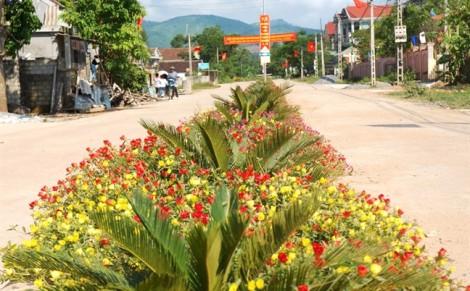 Con 'đường hoa' đẹp mê mẩn ở xã miền núi