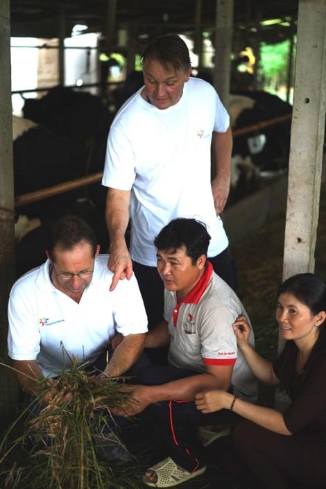 Giao lưu, tập huấn kỹ thuật chăn nuôi bò sữa giữa nông dân Hà Lan và nông dân Việt Nam