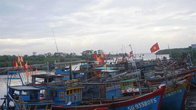 Bao Damrey manh cap 12 do bo Khanh Hoa - Phu Yen