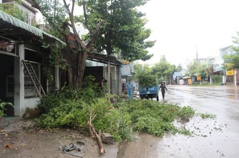 22 tàu cá Bình Định đang ở trong vùng nguy hiểm của bão số 12