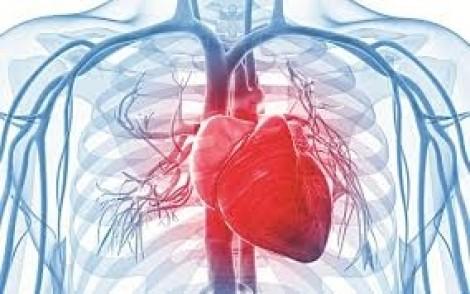 5 thói quen cho trái tim khỏe mạnh