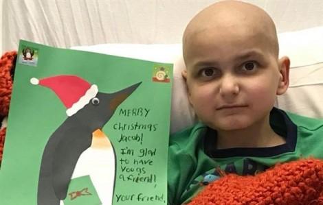 Điều ước cuối cùng của bệnh nhân ung thư 9 tuổi