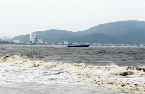 Nhiều tàu bị chìm, thuyền viên nhảy xuống biển vì không được vào cảng Quy Nhơn tránh bão?