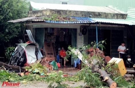 Bình Định ngập nặng sau bão Damrey, người dân dùng bè tự chế để di tản