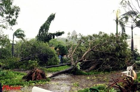 Gần 8.000 ngôi nhà ở Phú Yên hư hỏng, 15 người mắc kẹt ở cảng Vũng Rô chờ cứu