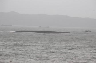 Khẩn trương xử lý dầu tràn trên biển Quy Nhơn sau bão Damrey