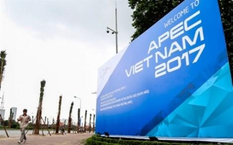 Hàng loạt sự kiện mở màn cho APEC 2017