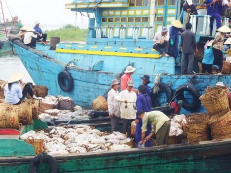 """Hiệp định thương mại tự do Việt Nam - EU: Có nguy cơ bị """"treo"""" vì thẻ vàng IUU"""