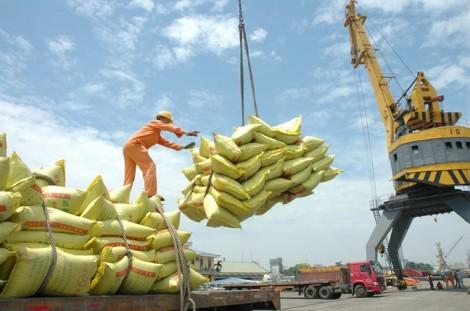 Xuất khẩu gạo đi Trung Quốc: Bao giờ mới giành thế chủ động?