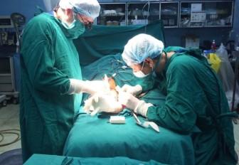Sử dụng bằng giả của Đại học Y khoa Phạm Ngọc Thạch để học chấn thương chỉnh hình