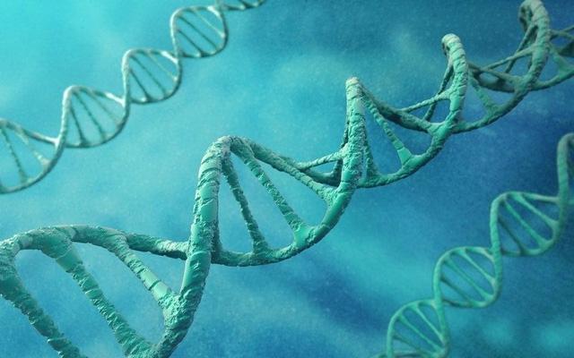 Cac nha khoa hoc phat hien gen lien quan den dong tinh