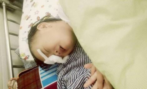 Bé gái 2 tuổi bị gà chọi mổ mù một mắt