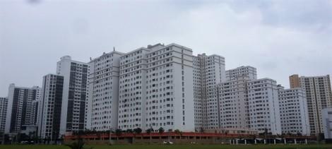 Bán đấu giá gần 3.800 căn hộ tái định cư xây xong bỏ hoang bên kia sông Sài Gòn