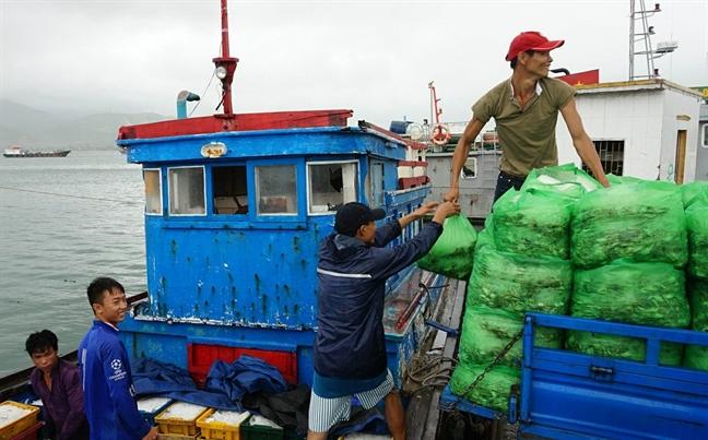 Thu tuong phat cong dien khan chu dong doi pho bao Tembin