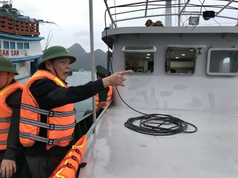 Côn Đảo đưa ngư dân vào bờ, di tản người đến nơi kiên cố để tránh bão Tembin