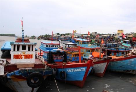 TP.HCM hoàn tất công tác gia cố đê bao, neo đậu tàu thuyền ứng phó bão Tembin