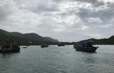 Du thuyền với 4 thuyền viên Thái Lan vào Côn Đảo tránh bão