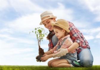 Trẻ thơ tái sinh người lớn