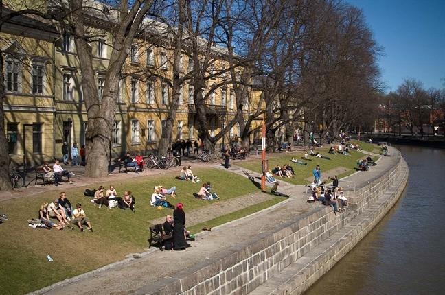 Turku co do quang khan lua