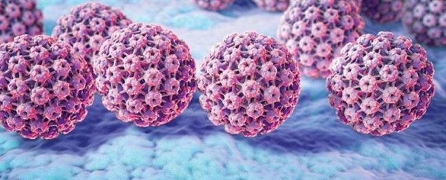 HPV va ung thu dau co