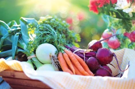Ai dễ bị thiếu vi chất dinh dưỡng?