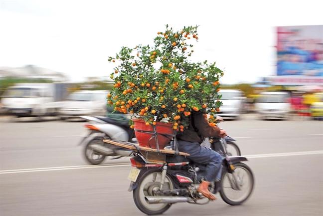 Choi xuan, cho de hoa buon
