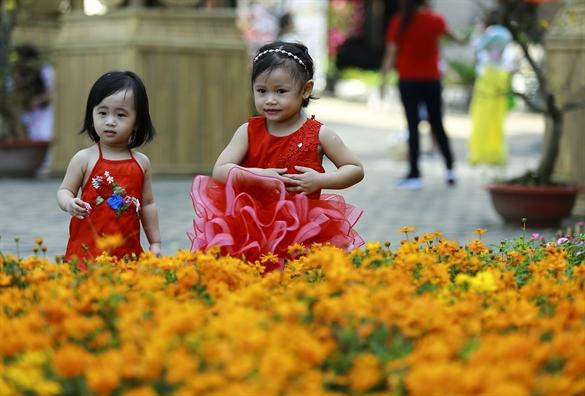 Ruc sac xuan hoa dong co noi o khu nha giau Sai Gon