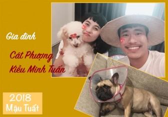 Năm Tuất, nghe sao Việt kể về những chú chó cưng