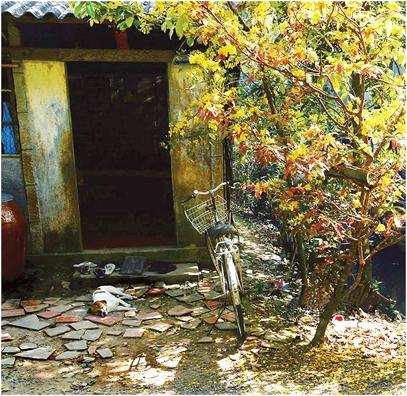 Hau ruou nha van Nguyen Quang Sang