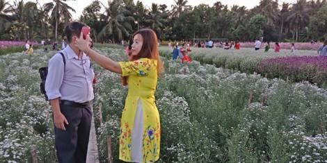Du khách đổ về Tiền Giang ngắm cánh đồng hoa rực rỡ ngày đầu năm