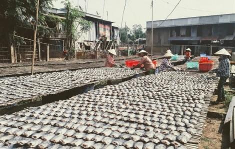 Cận cảnh làng nghề khô cá sặc bổi lâu đời lớn nhất miền Tây Nam Bộ
