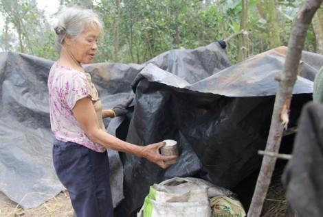 Nữ 'dị nhân' căng bạt sống bên cạnh mộ cha mẹ trong nghĩa địa để báo hiếu