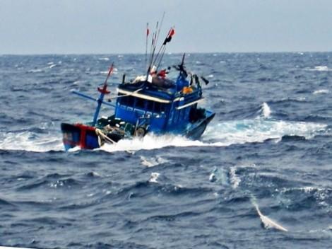 Mất liên lạc với tàu cá cùng 8 ngư dân