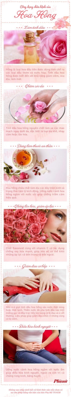Phụ nữ và hoa hồng tại sao không thể tách rời?
