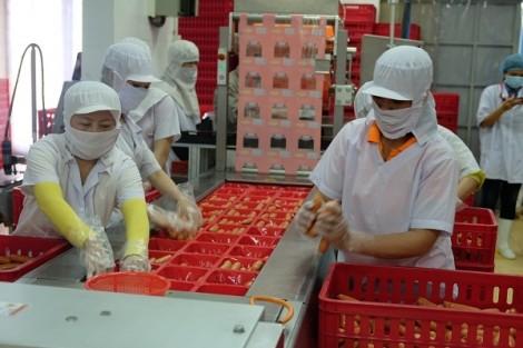 Viet Foods giới thiệu nhà máy sản xuất thực phẩm tiêu chuẩn quốc tế