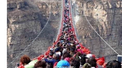 Hàng trăm du khách Trung Quốc thi gan với cầu đáy kính dài nhất thế giới