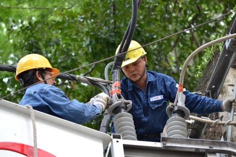Điện lực TP.HCM đảm bảo cung ứng đủ điện trong mùa khô