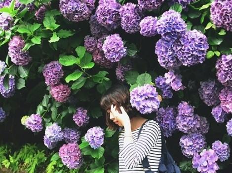 Lý do bạn nên du lịch Nhật Bản mùa hè này