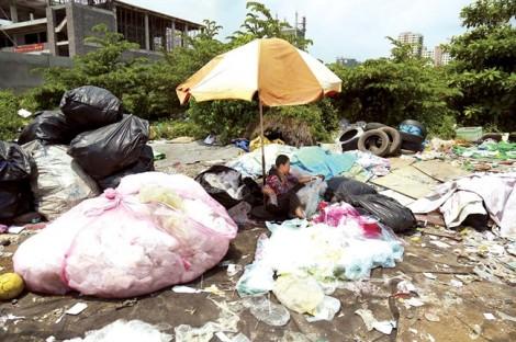 Bức ảnh kể chuyện: Nghiệp rác