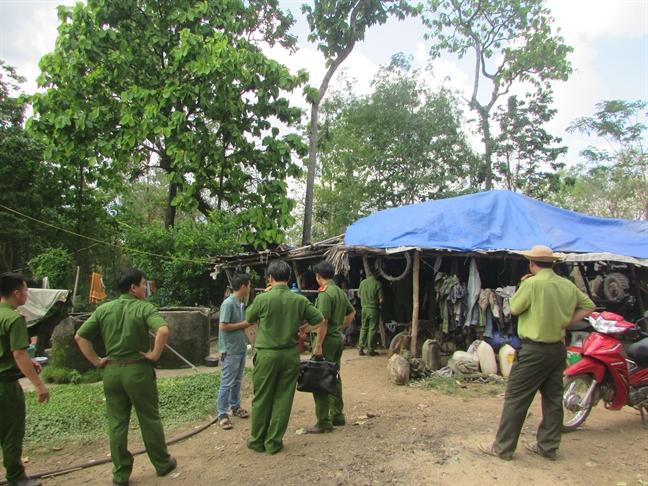 Vu vay bat trum go lau Phuong 'rau': Cuc Kiem lam noi gi?