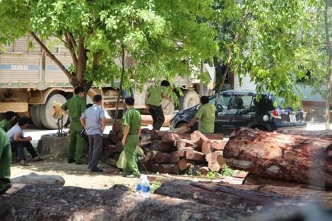 Vụ vây bắt trùm gỗ lậu Phượng 'râu': Cục Kiểm lâm nói gì?