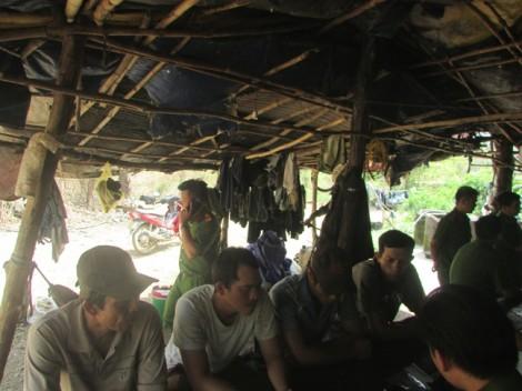 Sau vụ trùm gỗ lậu Phượng 'râu': Bộ đội Biên phòng tỉnh chỉ đạo làm rõ trách nhiệm đơn vị liên quan