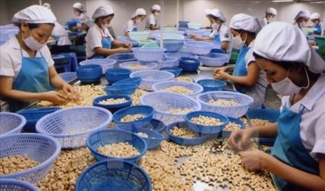 Đạt chuẩn hội nhập là lợi thế của sản phẩm xuất khẩu