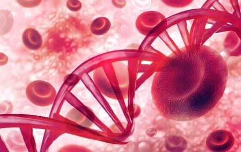 Cơ thể bạn có đang là môi trường tốt cho tế bào ung thư lớn mạnh?