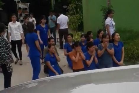 Vì sao các cô giáo mầm non quỳ xin được tiếp tục đứng lớp?
