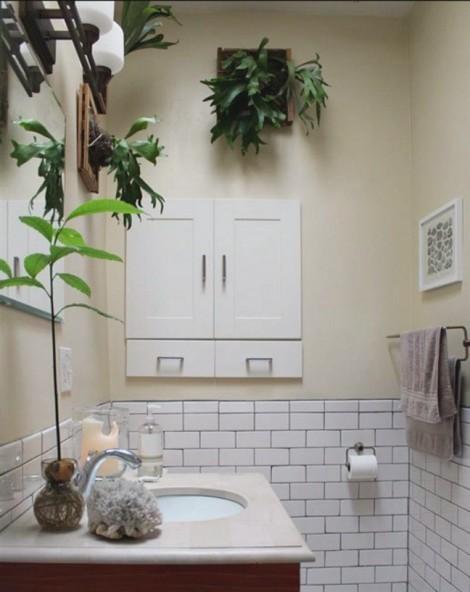 Đưa vườn cây vào phòng tắm