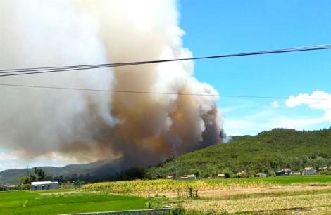 Huy động cả ngàn người cứu rừng thông bốc cháy giữa trời nắng 40 độ C