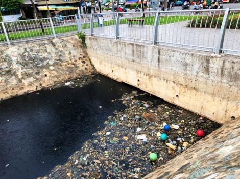 Cá chết đầy con kênh vừa được tái sinh ở Sài Gòn