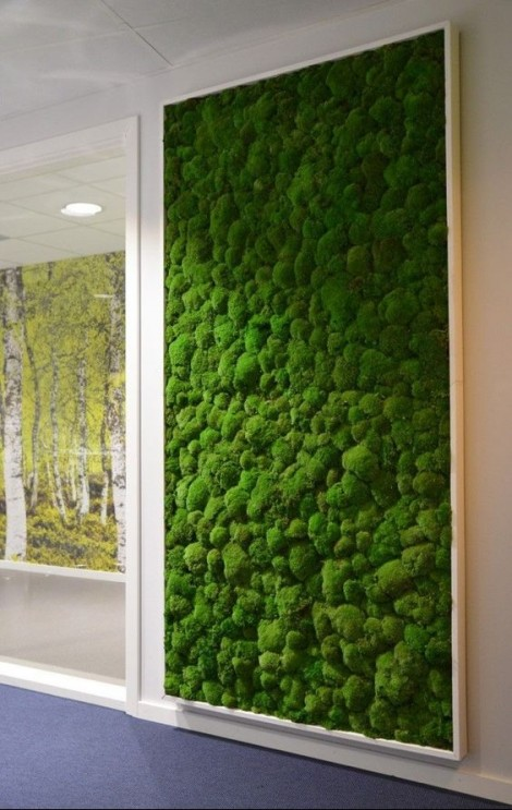 Phong cách thẩm mỹ tuyệt vời với tường rêu phong