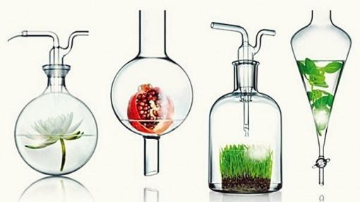 Bí quyết nhận diện mỹ phẩm hữu cơ đúng chuẩn